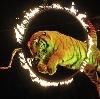 Цирки в Каринторфе